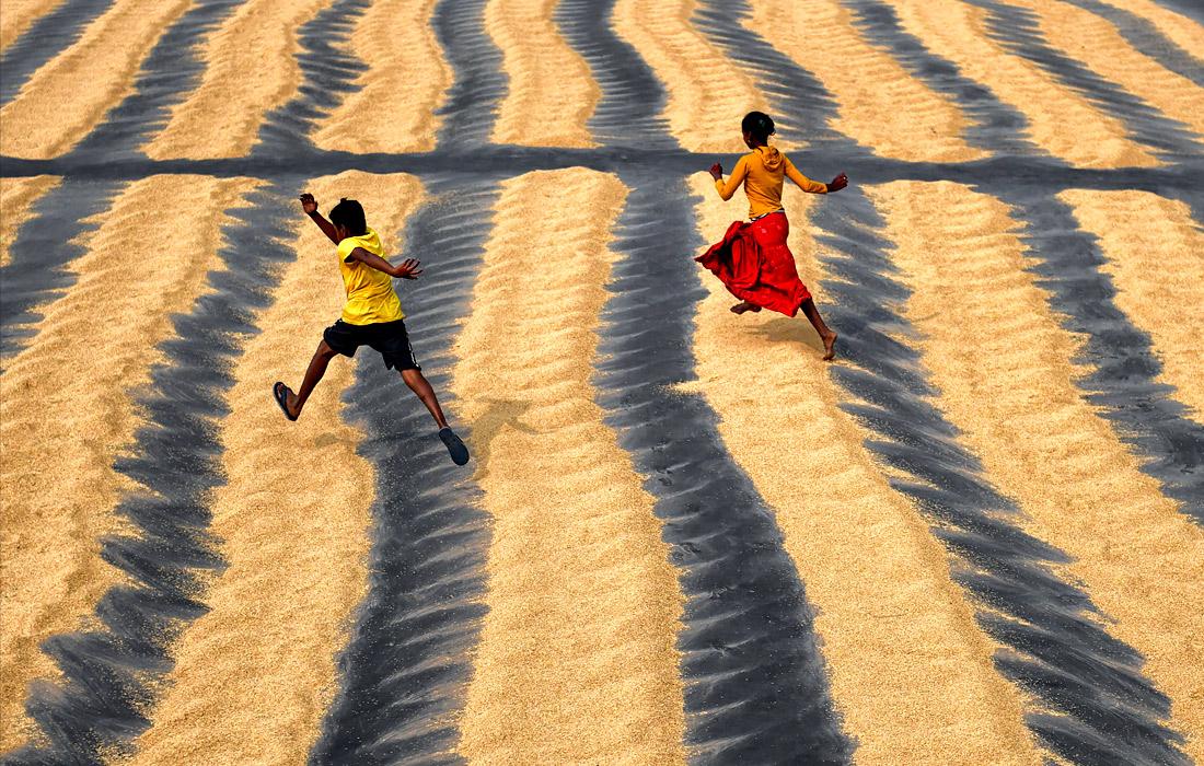 Дети играют на рисовом поле в Шантипуе, Индия