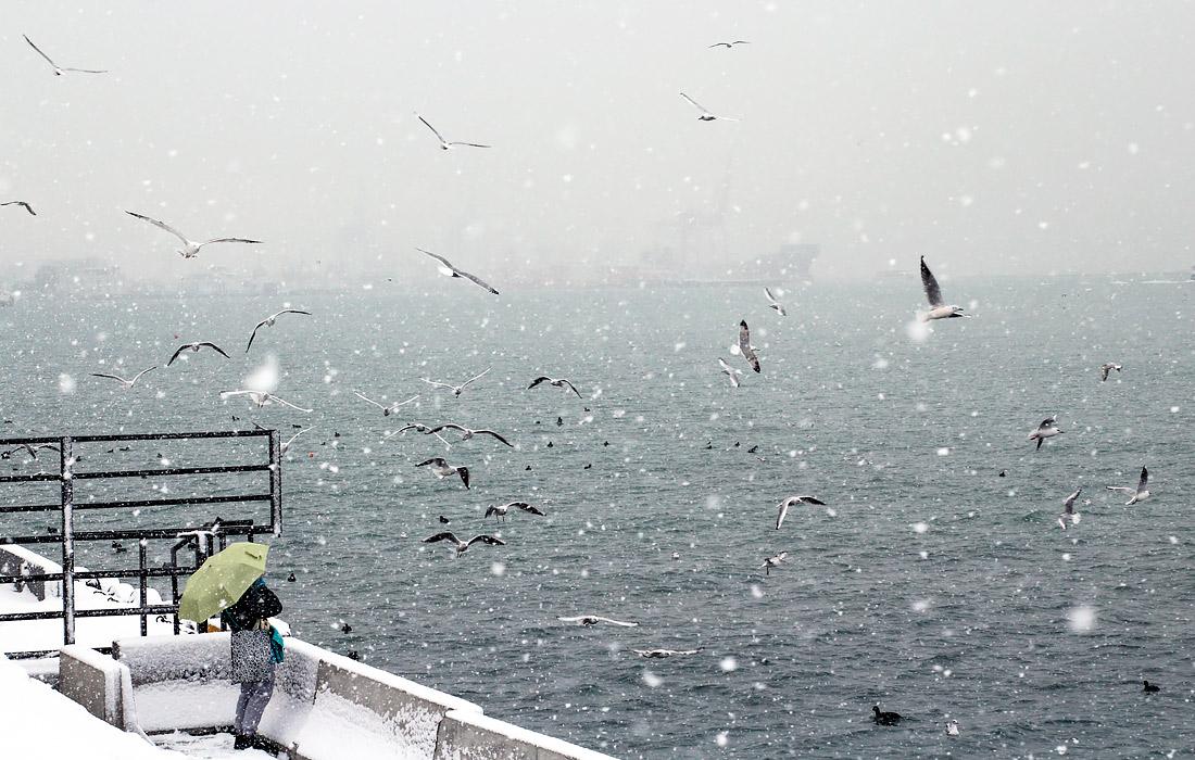 Снегопад в Стамбуле