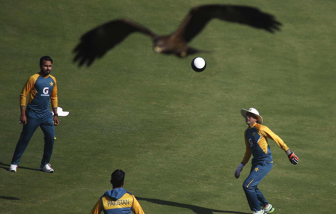 Пакистанские игроки тренируются перед серией игр по крикету в Карачи