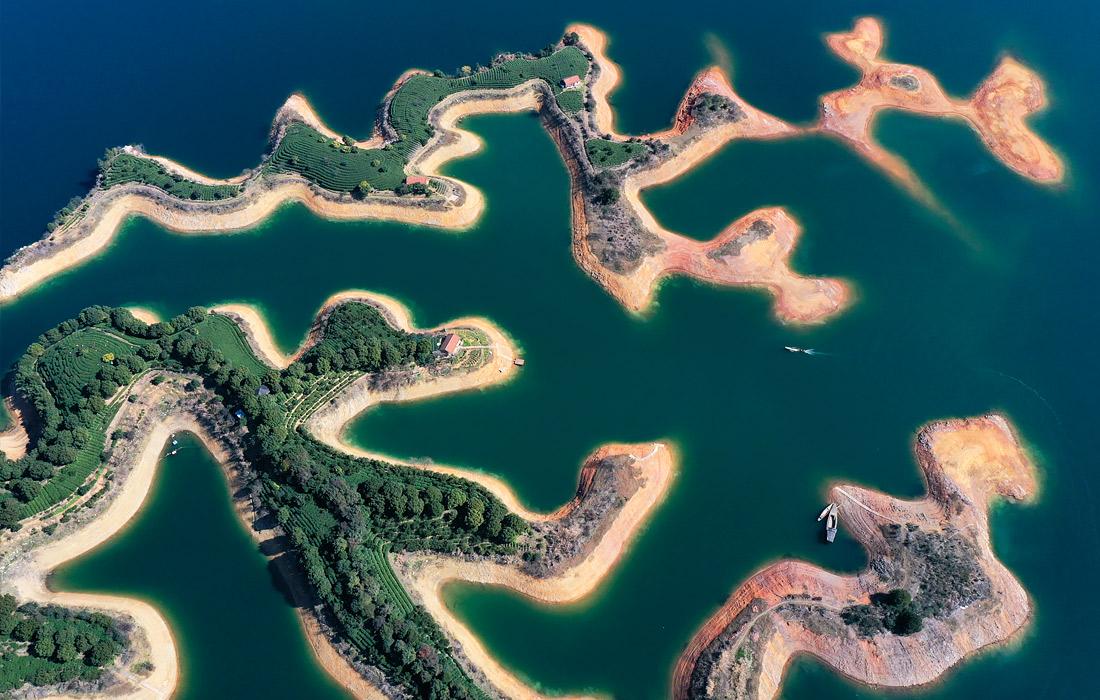 Чайные плантации посреди озера Цяньдаоху в Китае