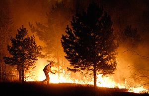 Пожары побеждают систему