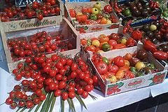 Онищенко разрешил овощи из ЕС