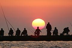 Платную рыбалку ограничат