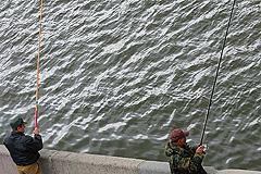 Рыбалка бесплатная