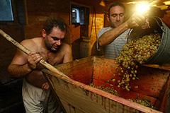 Грузинское вино становится ближе
