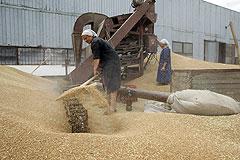 Зерно: пошлины вместо эмбарго