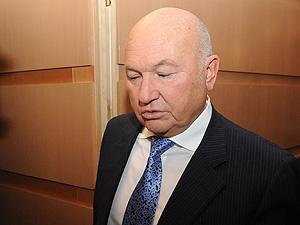 Лужков оценил премьера