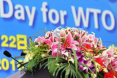 Россия в ВТО: одни плюсы