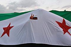 Сирия: вето осудили