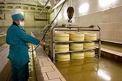 Предсказуемый сыр