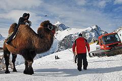 Кавказский туризм не за горами