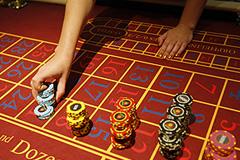 В Подмосковье раскрыта сеть казино