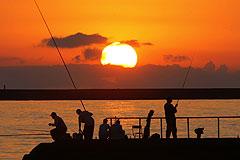 Пик активности на Солнце