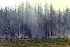 Томск погрузился в смог