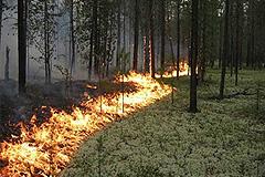 Пожары в Сибири: улучшения нет