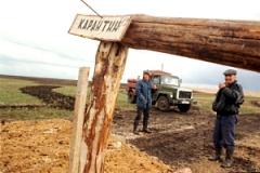Сибирская язва на Алтае: 10 человек в больнице