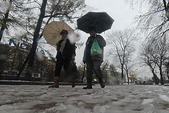 В Москве будет сыро