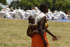 В 2050 году планету ждет голод