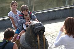 Куда пойти с детьми: 6 самых интересных мест