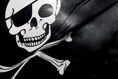 Экологов Greenpeace обвинили в пиратстве