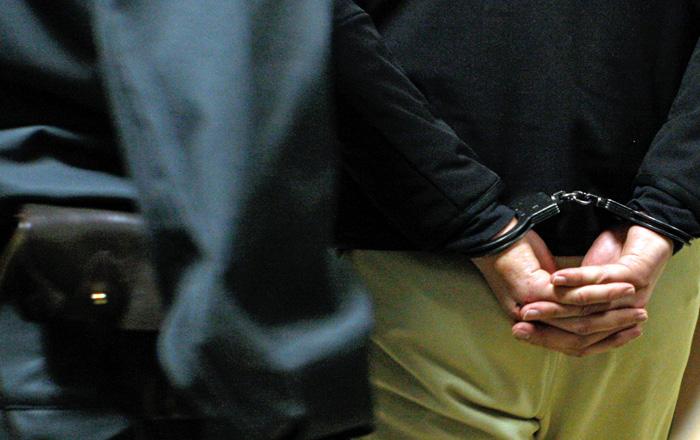 Дебош в самолете привел к двум уголовным делам