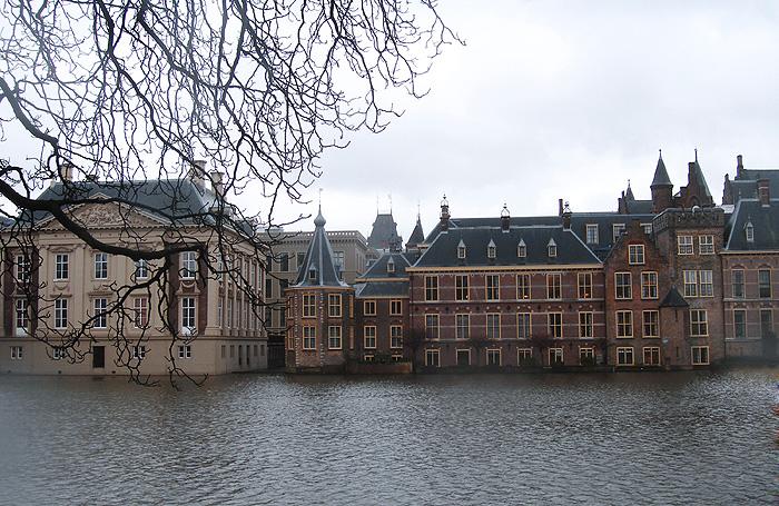 В Голландии избит российский дипломат