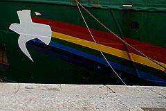 Вопрос с Greenpeace решат по российским законам