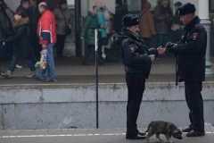 На борьбу с оргпреступностью в России выделят 8 триллионов рублей