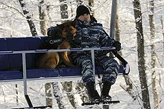 Иностранные спецслужбы привлекли к обеспечению безопасности в Сочи