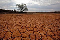 Эксперты ООН предупредили о последствиях глобального потепления