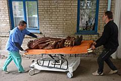 Ополченцы сообщили о жертвах в ходе боев в Славянске