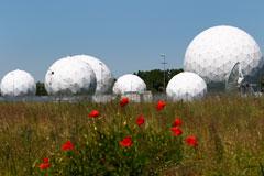 Сотрудника немецкой спецслужбы заподозрили в шпионаже на США