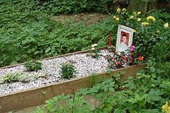В Великобритании проведут открытое расследование смерти Литвиненко