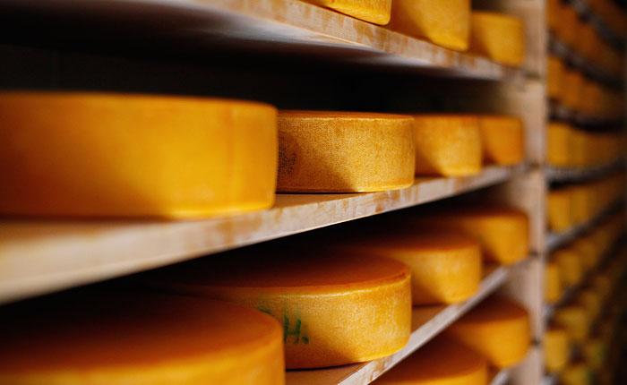 Россия ответила на санкции запретом ввоза продовольствия
