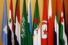 Глава Миссии ЛАГ в Москве: Израиль сам настраивает против себя палестинцев