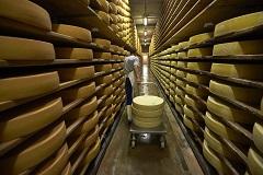В Швейцарии рассказали о просьбах компаний из ЕС помочь с поставками продуктов в Россию