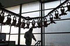 Таможенный союз сможет поставлять в Россию попавшие под эмбарго продукты