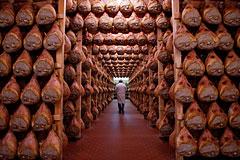 Итальянский бизнес заявил о потерях из-за санкций против России