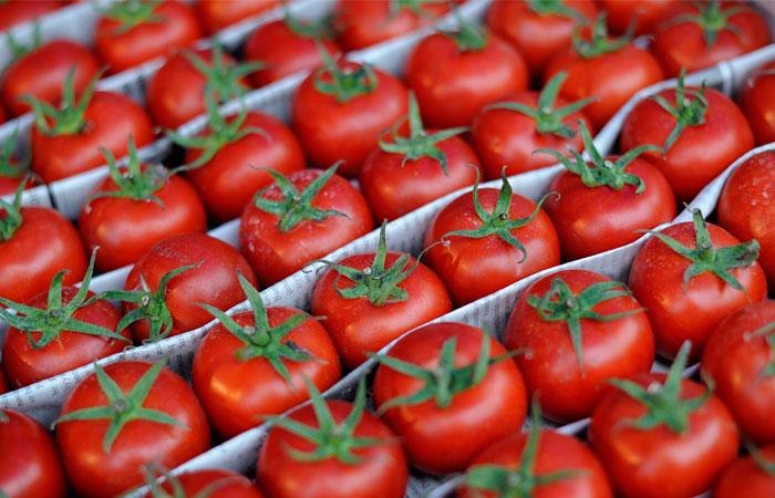 Экспортер из Узбекистана заключил договор на поставки фруктов и овощей с властями Тюменской области