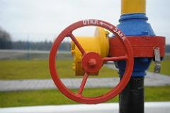 Порошенко получил от Словакии гарантии по реверсу газа