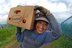 Минтруда создаст для мигрантов реестр работодателей