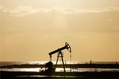 ОПЕК решила не снижать производство нефти
