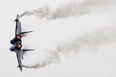В Подмосковье потерпел крушение учебно-боевой истребитель МиГ-29