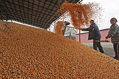 "В России ""застряло"" более 3 млн тонн зерна"