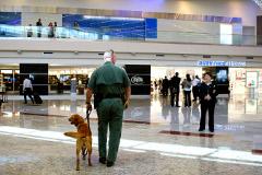 ФБР не нашло бомб на борту самолетов в аэропорту Атланты