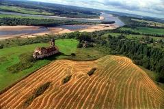 В Госдуме предложили раздавать пустующие земли бесплатно