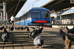 Путину 20 марта представят эффективную модель пригородных ж/д перевозок