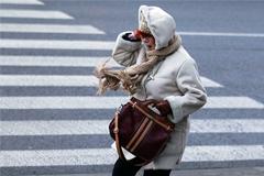 Сильный ветер сохранится в Москве в ближайшие дни
