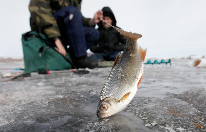 Рыба в России подорожала на треть после введения эмбарго