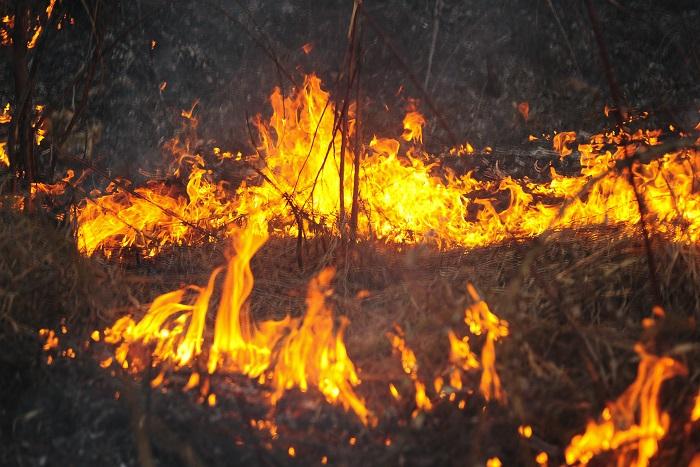В результате пожаров в Хакасии сгорели более 1,2 тысячи домов